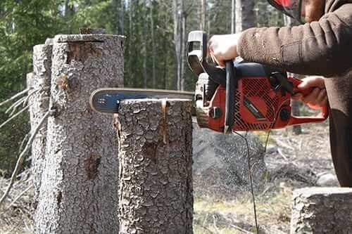 kör med motorsåg i ett träd