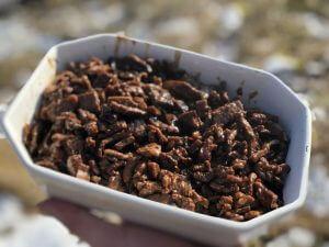 stekt älgkött i en skål