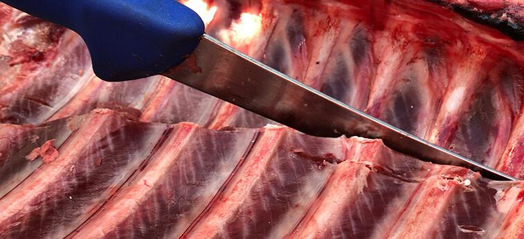slaktkniv skär i kött