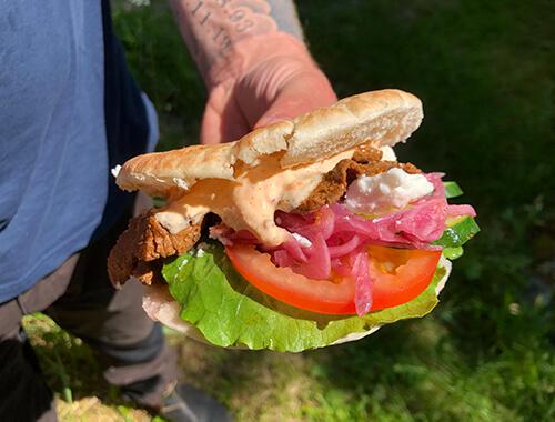 en närbild på viltkebab med pitabröd