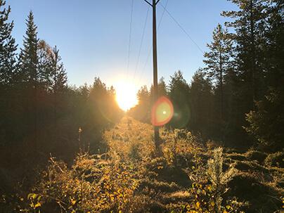 soluppgång en septembermorgon vid en kraftledning
